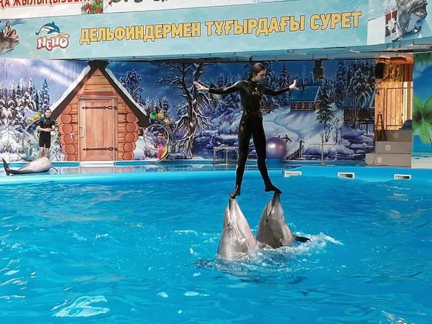 Дельфин де демеп… емдейді!