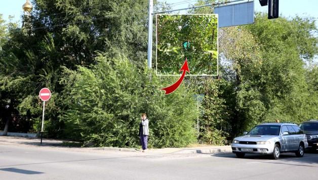 Покрасить «пешеходки», «вызволить» из куста светофор