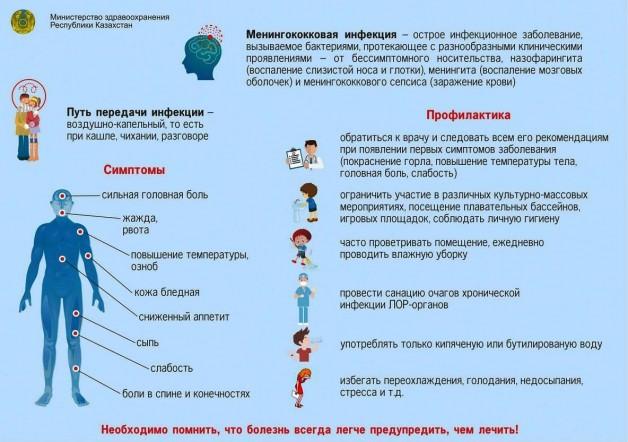 Что такое менингит?