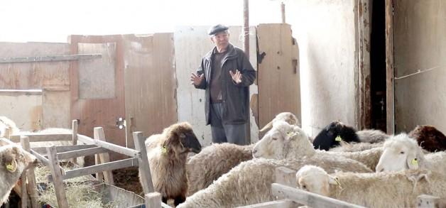 Берері мол шаруаны қолға алған ауыл кәсіпкері