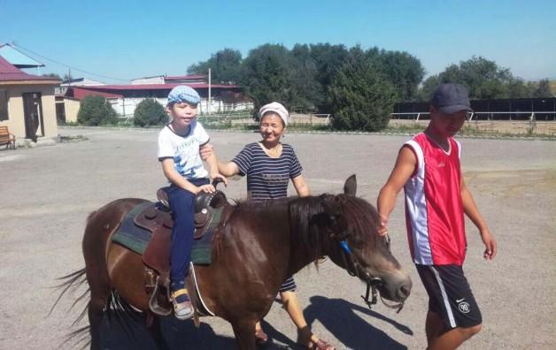 Лошадь как друг и… инструктор